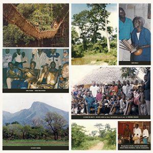Images de 100 %Guinée Forestière